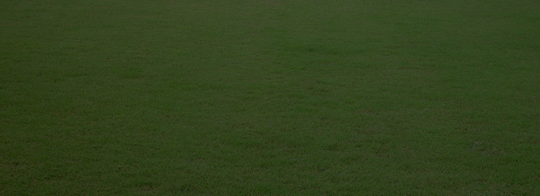 grass_textureatom